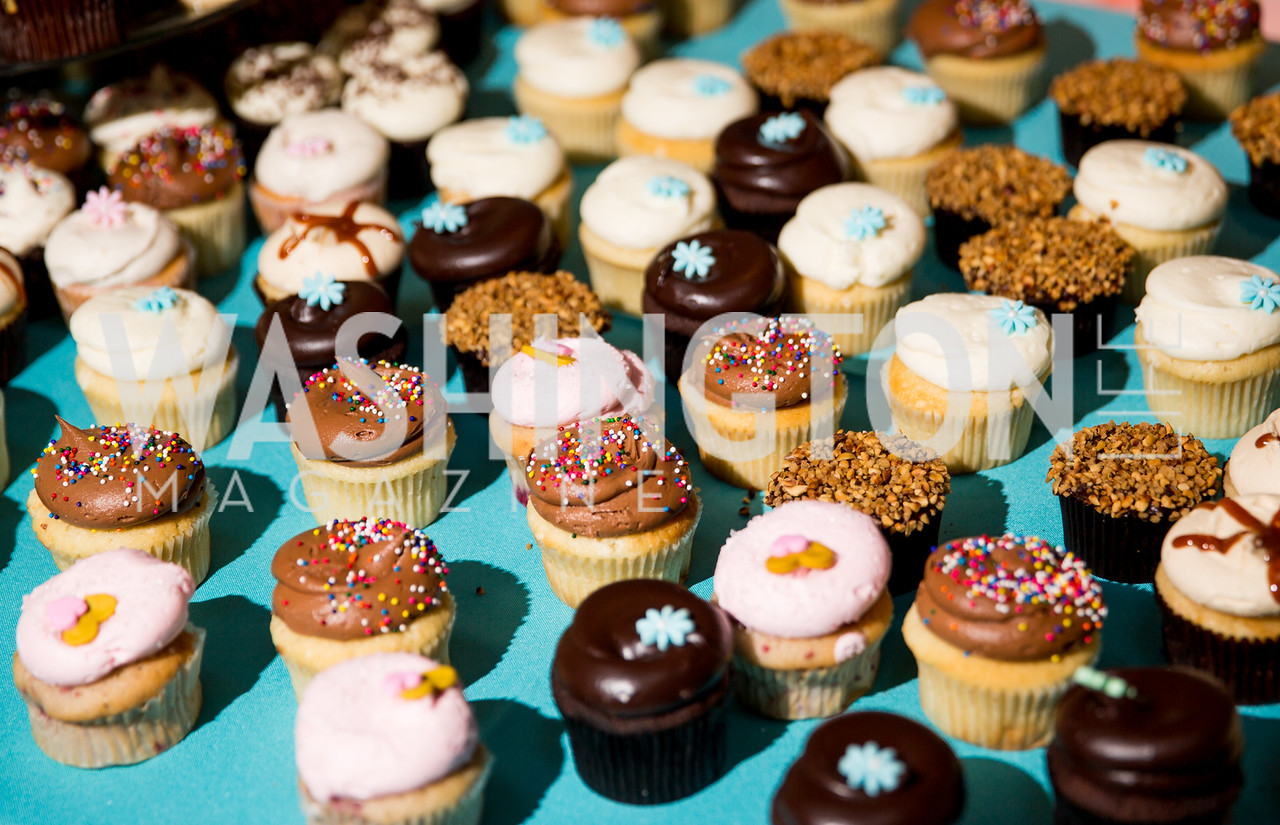 Cupcakes by Georgetown Cupcake. Photo by Erin Schaff. 2016. Washed Ashore: Art to Save the Sea VIP Reception. Smithsonian National Zoo Elephant Community Center. May 26, 2016.