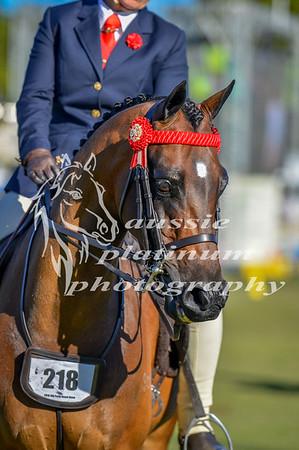 2016 Perth Royal Show Thursday 29-9