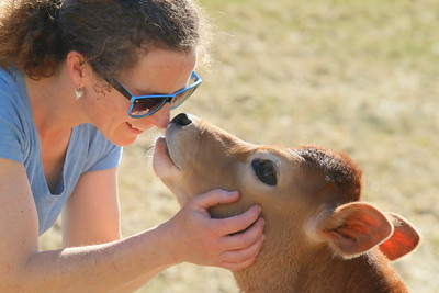 IMG_4406 amy richradson and calf of hartland