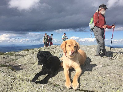 Caitlin Quinn of Tunbridge - vaida (of tunbridge, vt) and her friend maggie enjoying the summit of mount mansfield