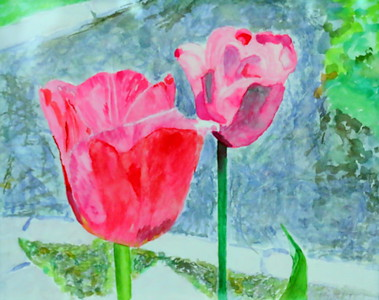 IMG_4075 Tulips,,by patsy highberg,,,watercolor