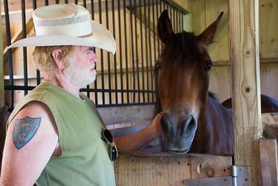 Horses Comforting Veterans