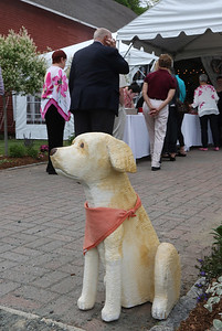 Paws for the Cause Annual Dinner and Auction