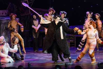 CATS, The Musical