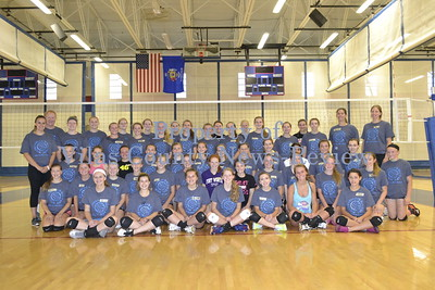 Rod Wilde's Volleyball Camp