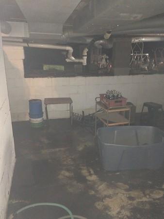 2016-01-02 DR Watseka, IL Flooding