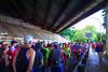 2016 Parks Half Marathon - Photo by Alex Reichmann, MCRRC