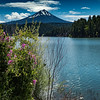 Mt McLoughlin from Willow Lake, Medford Water Commission Butte Springs Tour