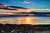 Great Island Common Sunrise
