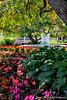 Prescott Park Flower Garden