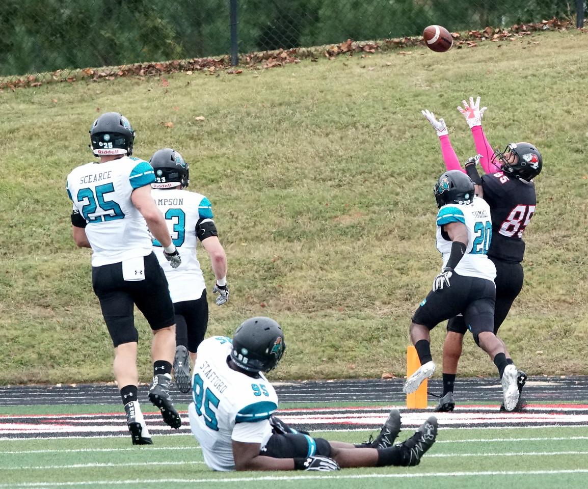Number 85, Adonus Lee, catching a touchdown.