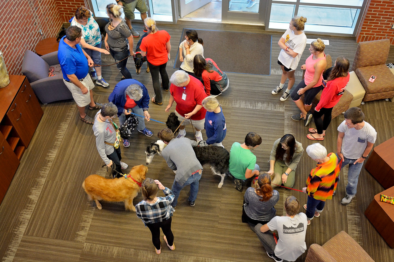 Students gather in Tucker to see and play with the dogs