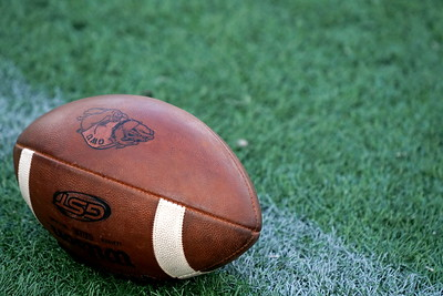 A football waits for play to begin.