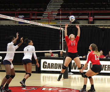 Amanda Sahm (11) setting the ball for middle hitter Hannah Driscoll (13)