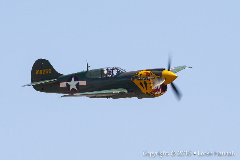 "P-40K Warhawk ""Aleutian Tiger"" - Texas Flying Legends"