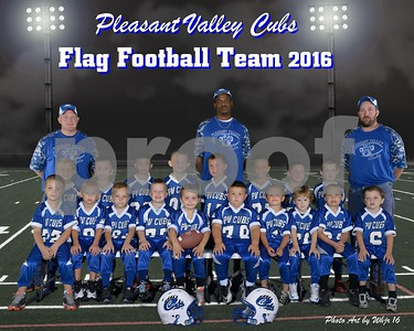 2016 P V Cubs Flag Football