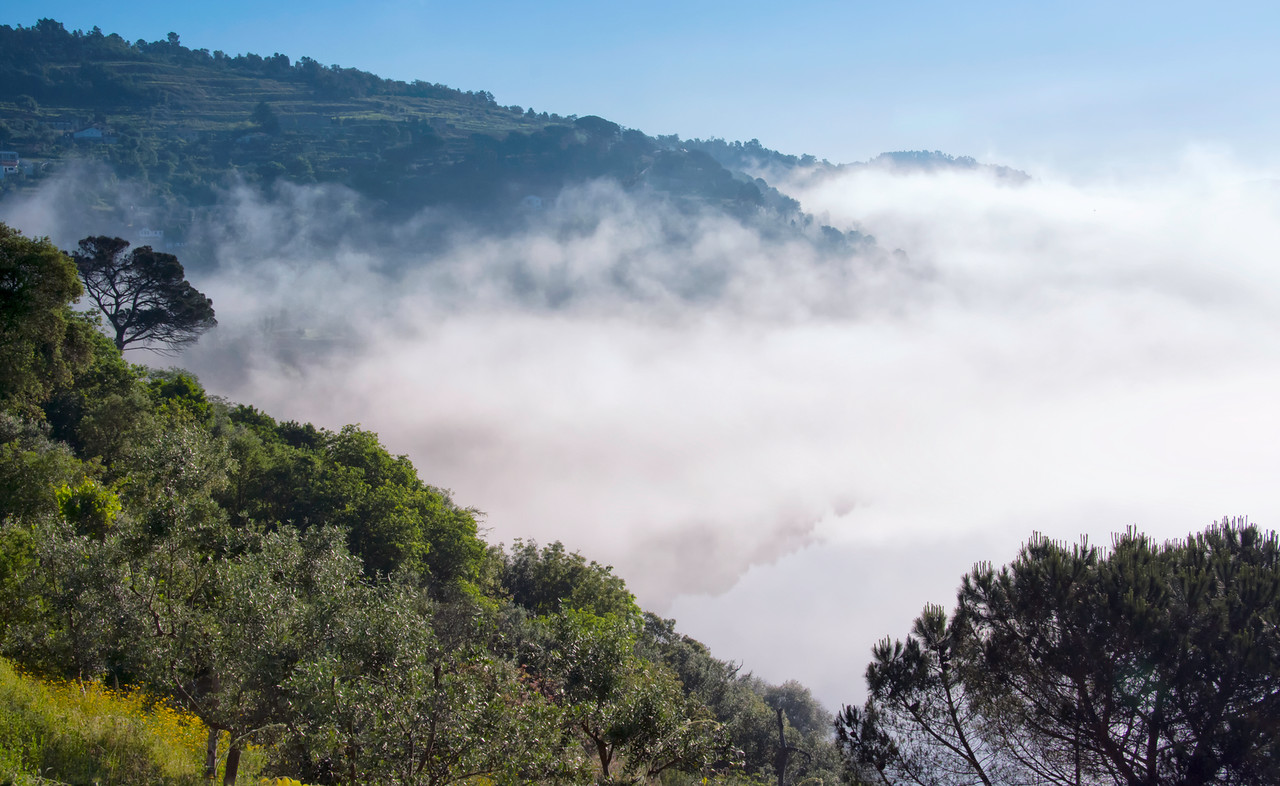 Fog lifting, Douro valley