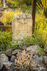Shafter Cemetery-5574