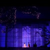 A scene from MADAMA BUTTERFLY (April, 2016).