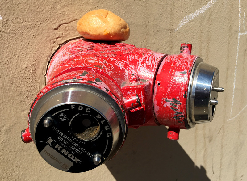 standpipe and dinner roll