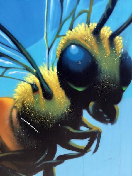 random bee