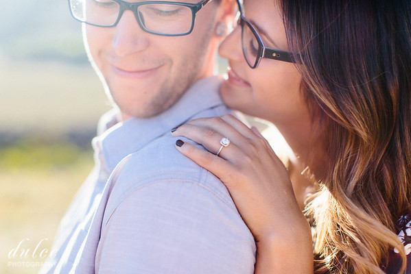 Gabe and Chuck Engagements