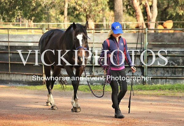 Shelley Appleton Groundwork Clinic