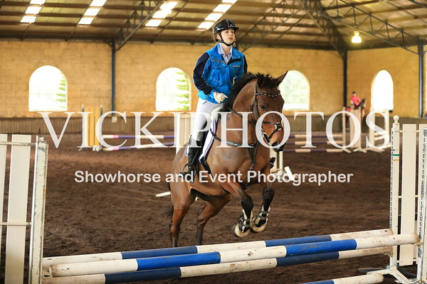 Equine Services Day