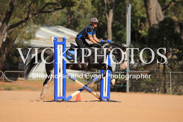 65cm Show Jumping