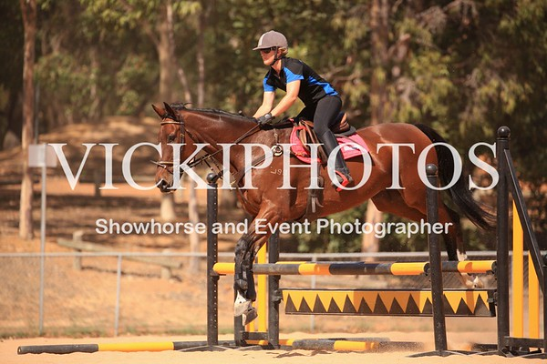 80cm Show Jumping