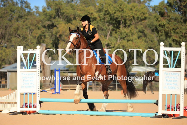 45cm Show Jumping