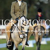 Granthams Show Horse Champs_02