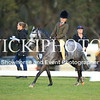 Granthams Show Horse Champs_14