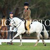 Granthams Show Horse Champs_15