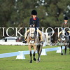 Granthams Show Horse Champs_04
