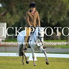Granthams Show Horse Champs_20