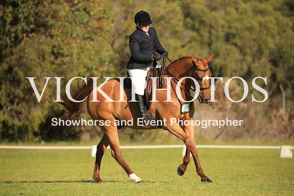 Pinjarra Winter Hack/Hunter Gala Championship Day