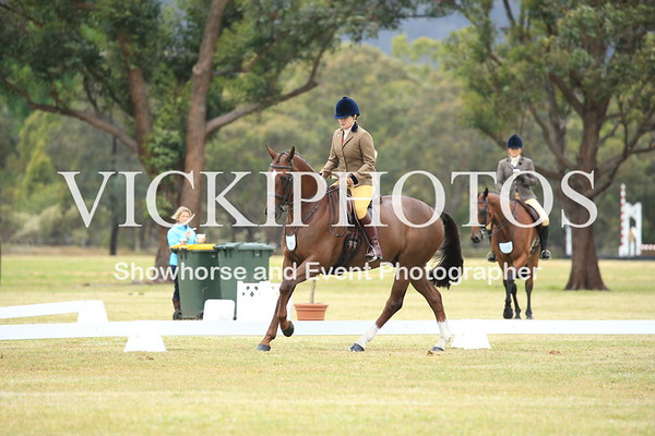 Class 5 - Small Show Hunter Hack