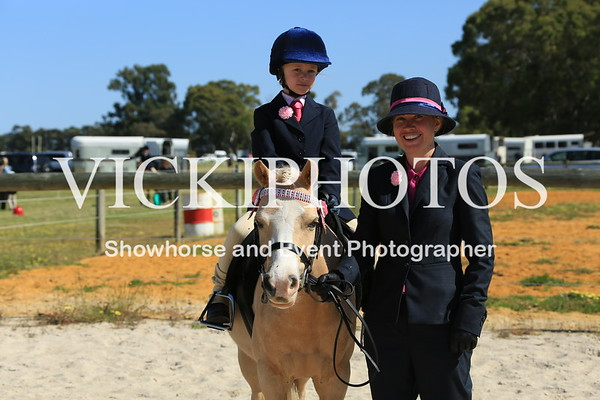 South Midlands Pony Club Unofficial Showhorse Day