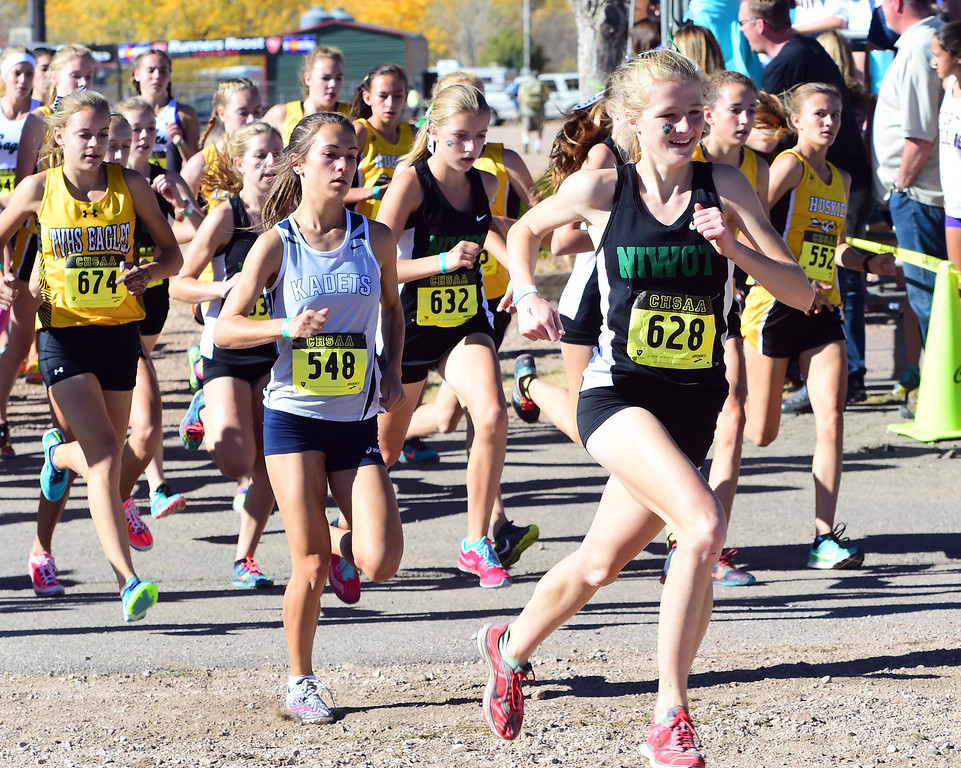 2016 State Cross Country