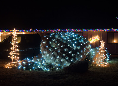 Light Display #19