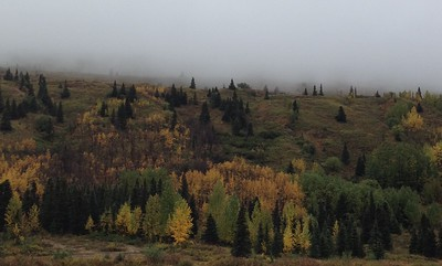 The colors coming down from Hatcher Pass.
