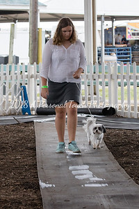 20160919-CLH_031