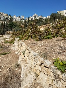 24-nazareth-village