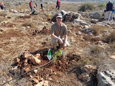 17-tree-planting