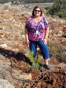 19-tree-planting