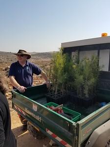 12-tree-planting