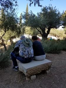 16-garden-of-gethsemane