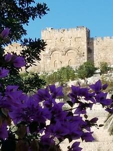 11-eastern-gate