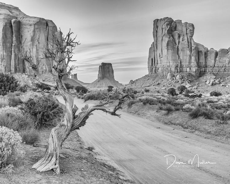 Monumental Road, Monument Valley, Arizona, September 2015